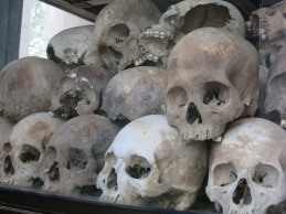 some of the skeletons that have been exhumed from the mass graves