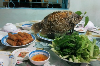 Dinner at the Homestay - fried elephant fish, spring rolls, salad, soup, etc