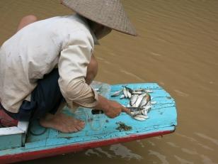 The fishing trip (gutting the catch) in Muang Ngoi Neua
