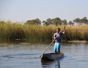 Ian poling the Mokoro boat