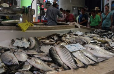 The fish markets in Lagos